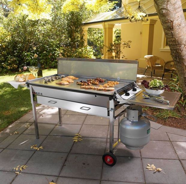 How to Keep Pests Away From Your BBQ